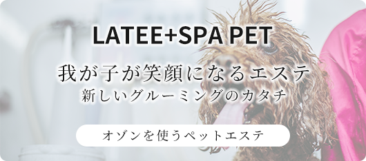 LATEE+SPA PET